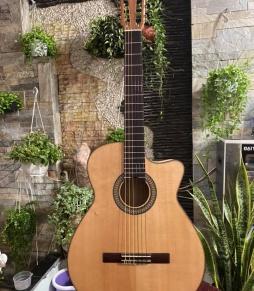 Đàn Guitar Classic ADS88500