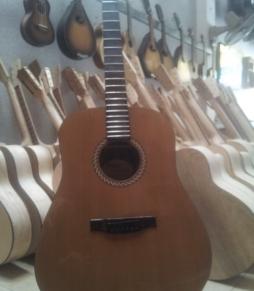 Đàn Guitar Acoustic DC250