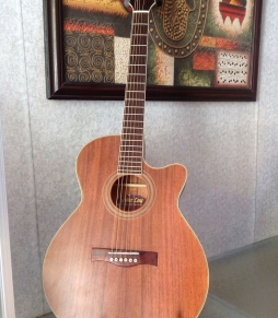Đàn Guitar Acoustic HD220