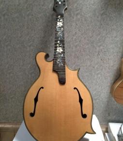 Đàn Mandoline DC220