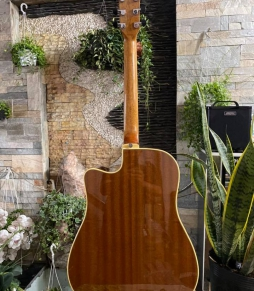 Đàn Guitar Acoustic EKO ONE D CW EQ VB